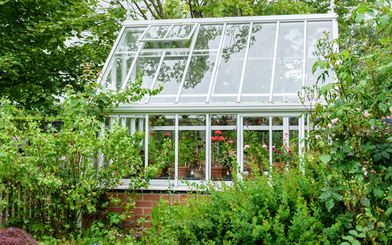 greenhouse ventilation open window