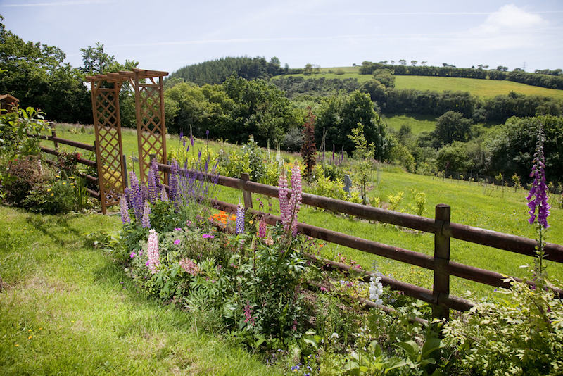 welsh country garden