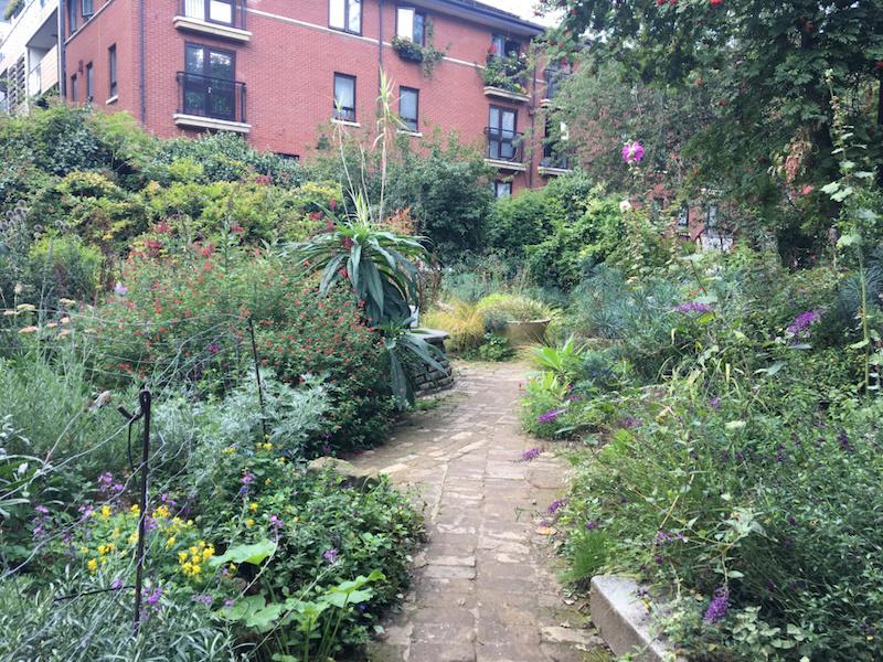 writer in the garden phoenix garden
