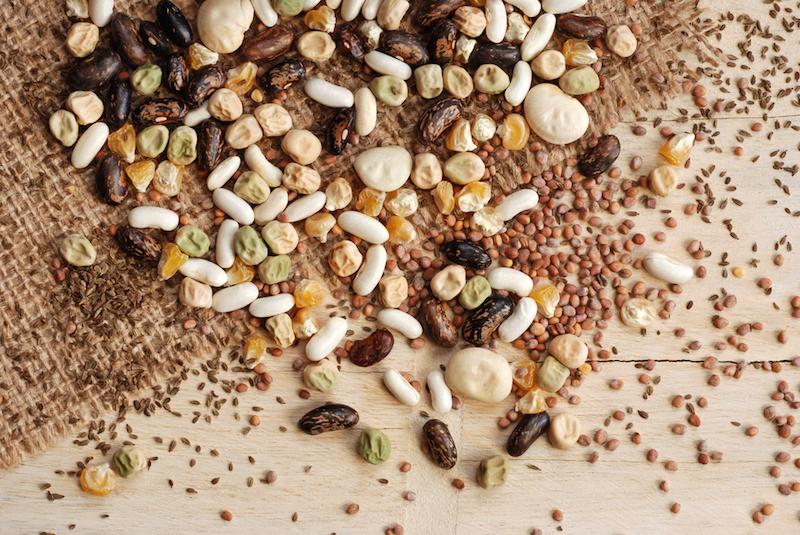 seeds-and-seedlings-on-sack