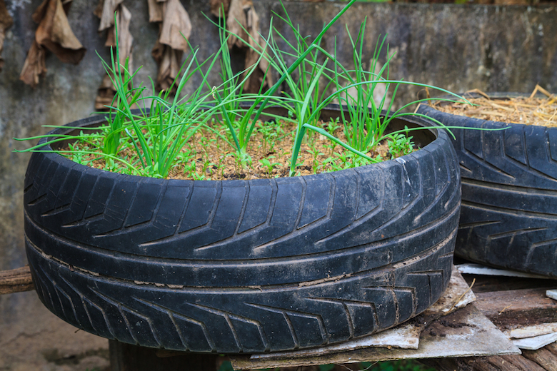 tyre-with-grass