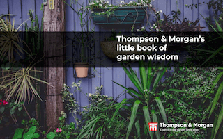 Introducing Thompson & Morgan's little book of garden wisdom