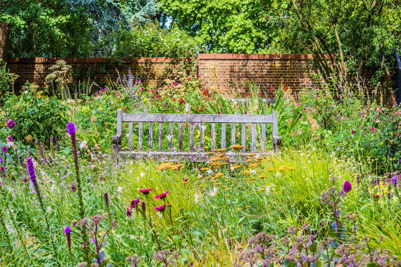 bench in the middle of a wildflower garden in England