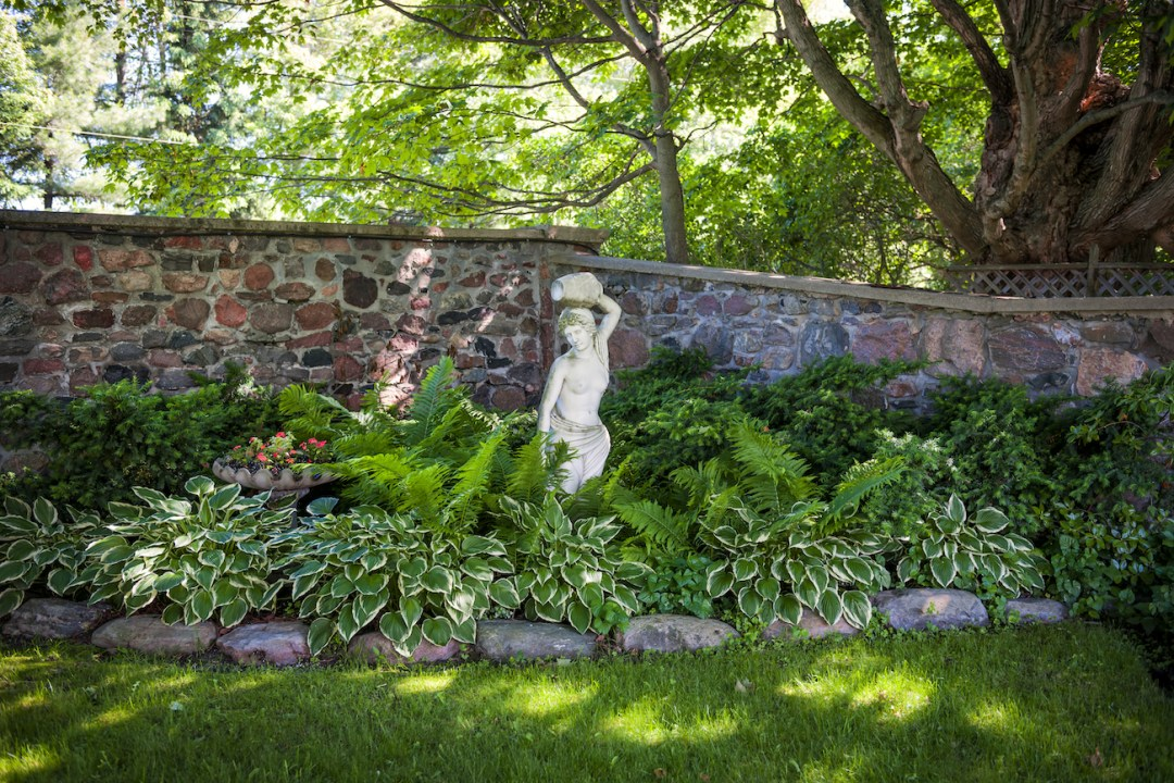 Shady corner of a garden with a statue, hostas, ferns and other plants