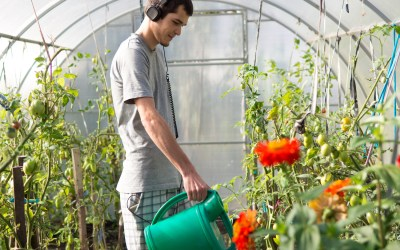 8 great gardening podcasts