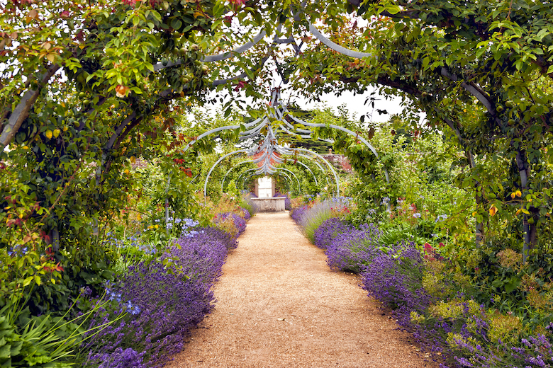 English garden in full bloom