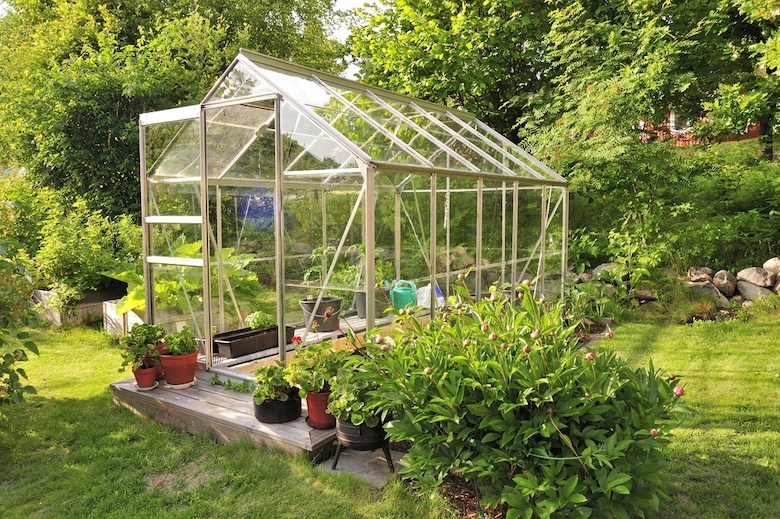 Stock image of a greenhouse with door open