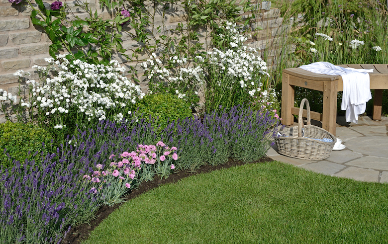 Small Border Planting Ideas With High Impact Blog At Thompson