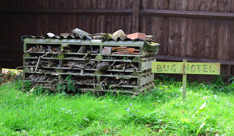 Bug hotel near a fence on grass