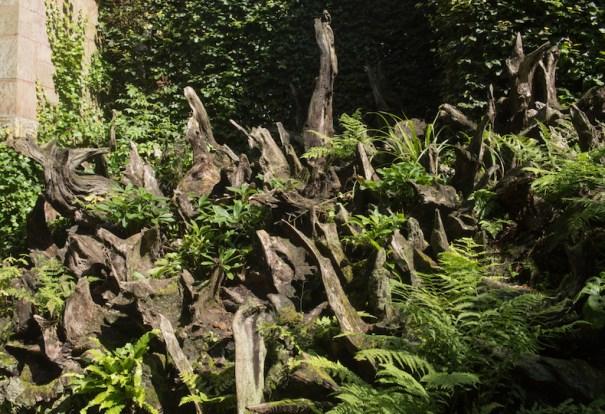 Stumpery de fougère dans le jardin