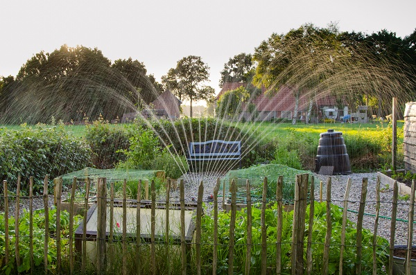 Water sprinkler in a garden and surrounding fence