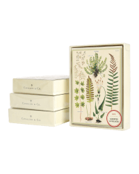 Boxed notecards from Those Plant Ladies; ivory background with greenery.