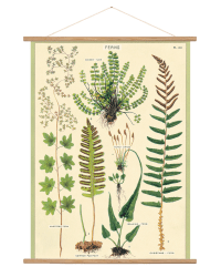 Ferns wrap from Those Plant Ladies. Ivory wall hanging with green ferns arranged in a collage.