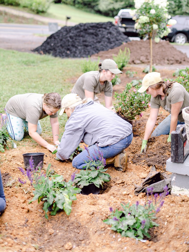 A crew of Those Plant Ladies installing a landscape installation; Those Plant Ladies: 5 Ways to Fight the Winter Blues