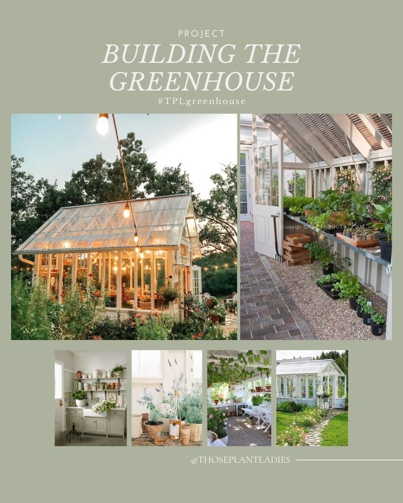 A curated collage of photos for inspiration for the TPL greenhouse from Those Plant Ladies.