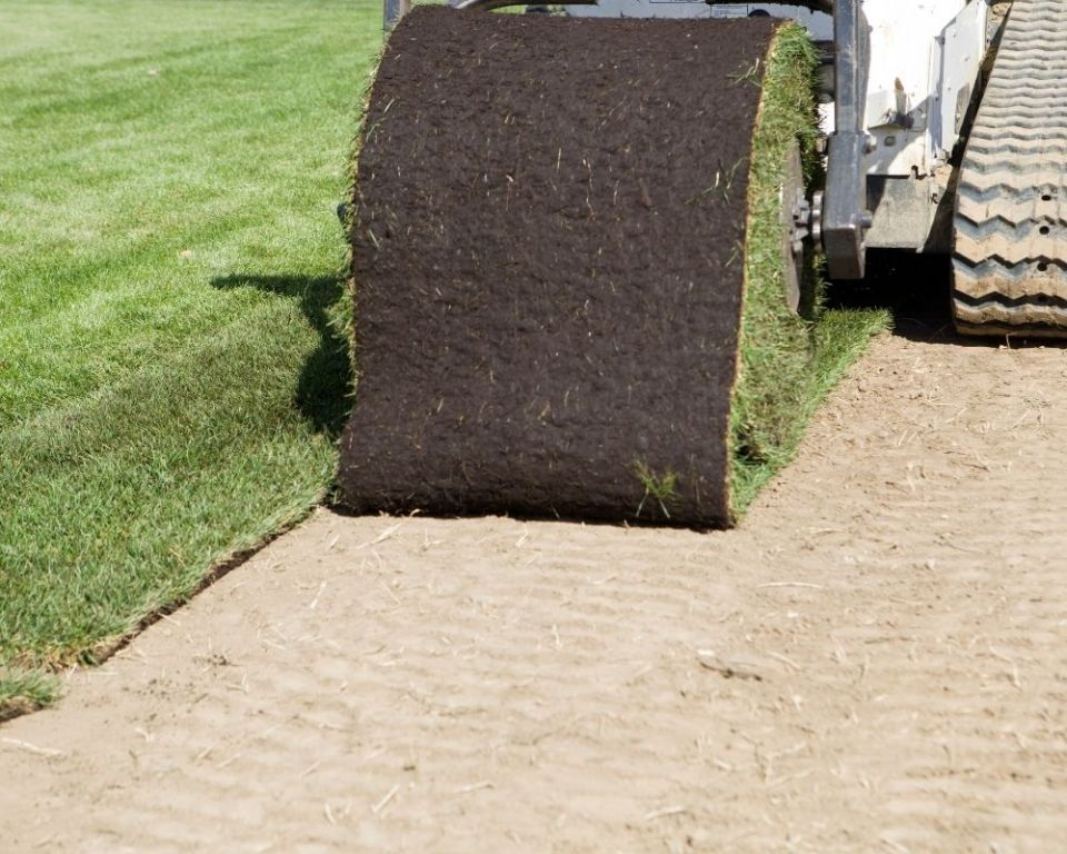 A roll of turfgrass being installed.