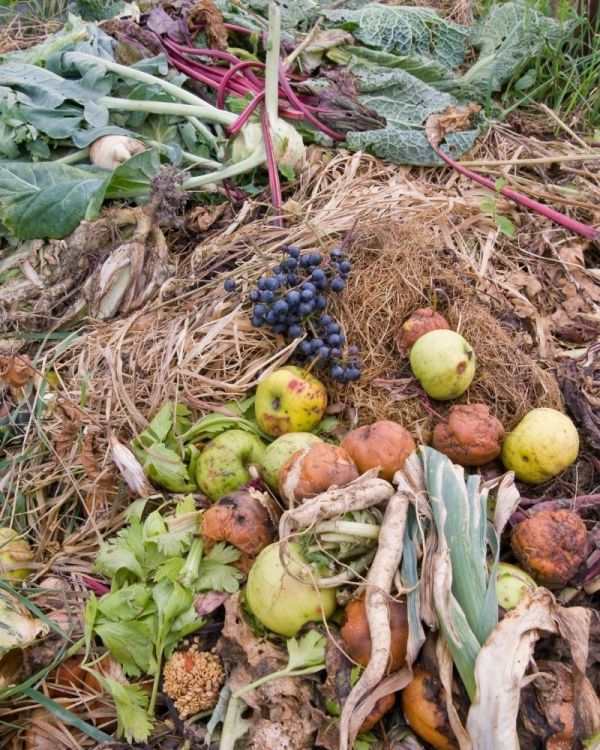 Food and natural earth, ready to be composted.