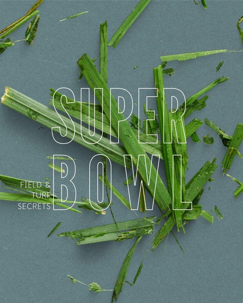 Super Bowl: field and turf secrets