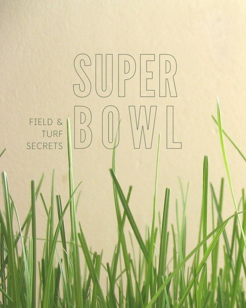 """Super bowl: field and turf secrets"" text."