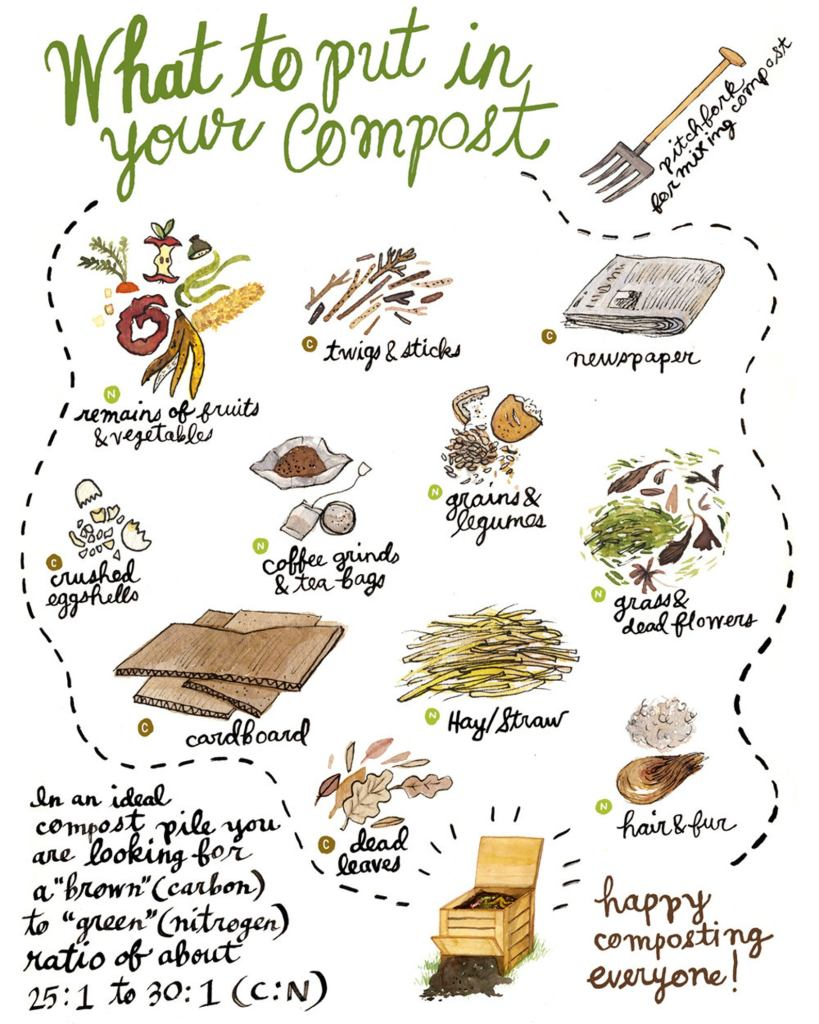 What to put in your compost, poster by Robin Clungston.