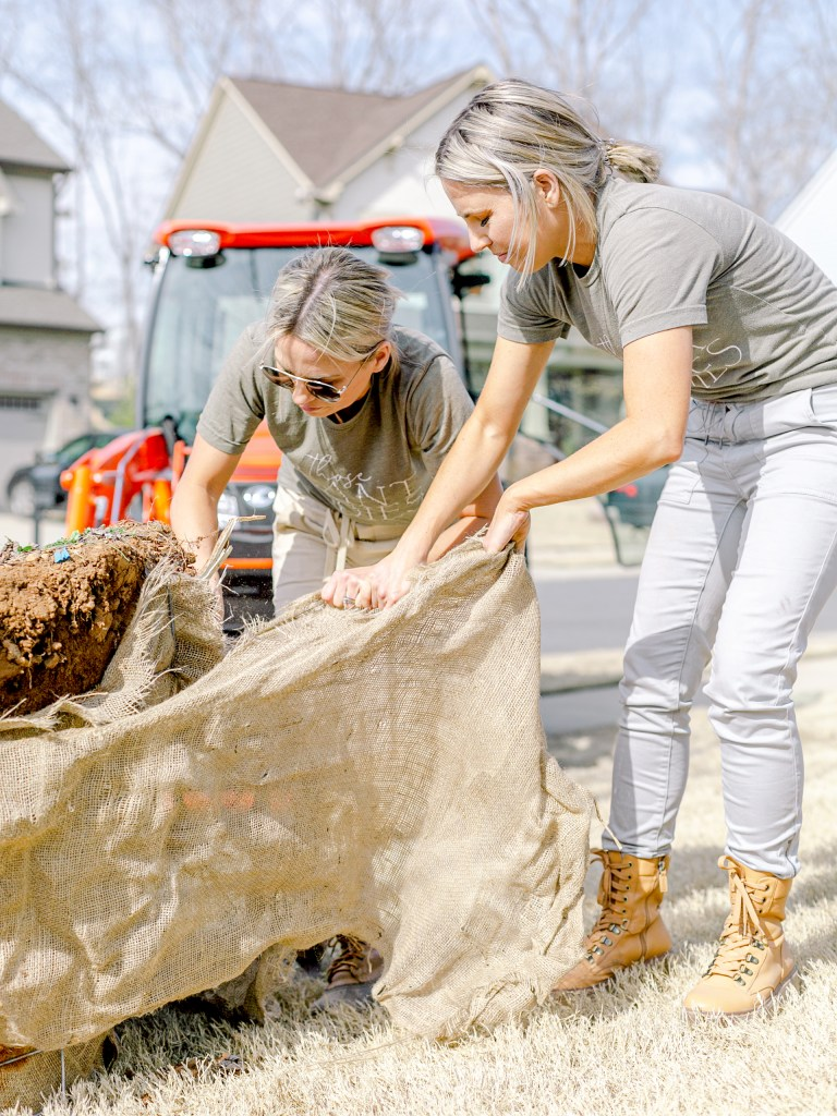 Fawn and Heather of Those Plant Ladies unwrapping the burlap from a tree in Charlotte, NC.