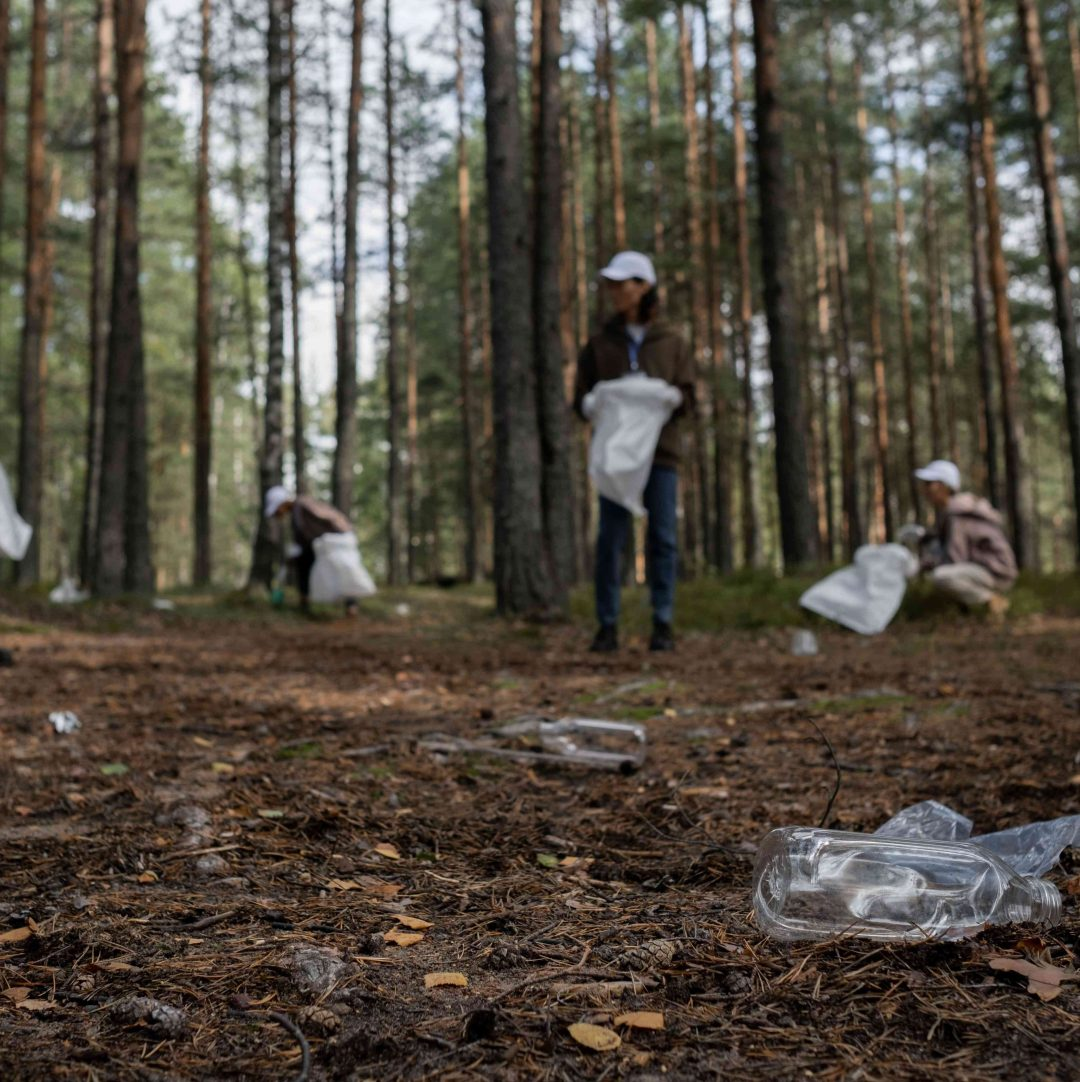 People collecting plastic waste in the wood