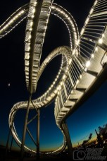 Tiger&Turtle2