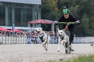 StrongDog_Gelsenkirchen_2017_46