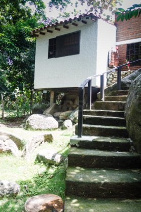Steps from house to rvier
