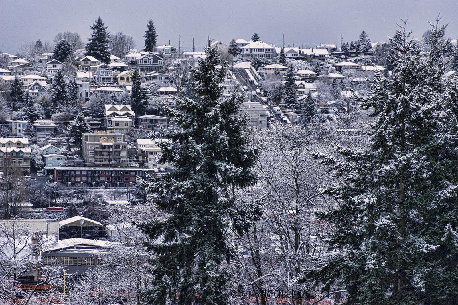 Queen Anne Hill (Seattle) in the snow. (January 13, 2020).