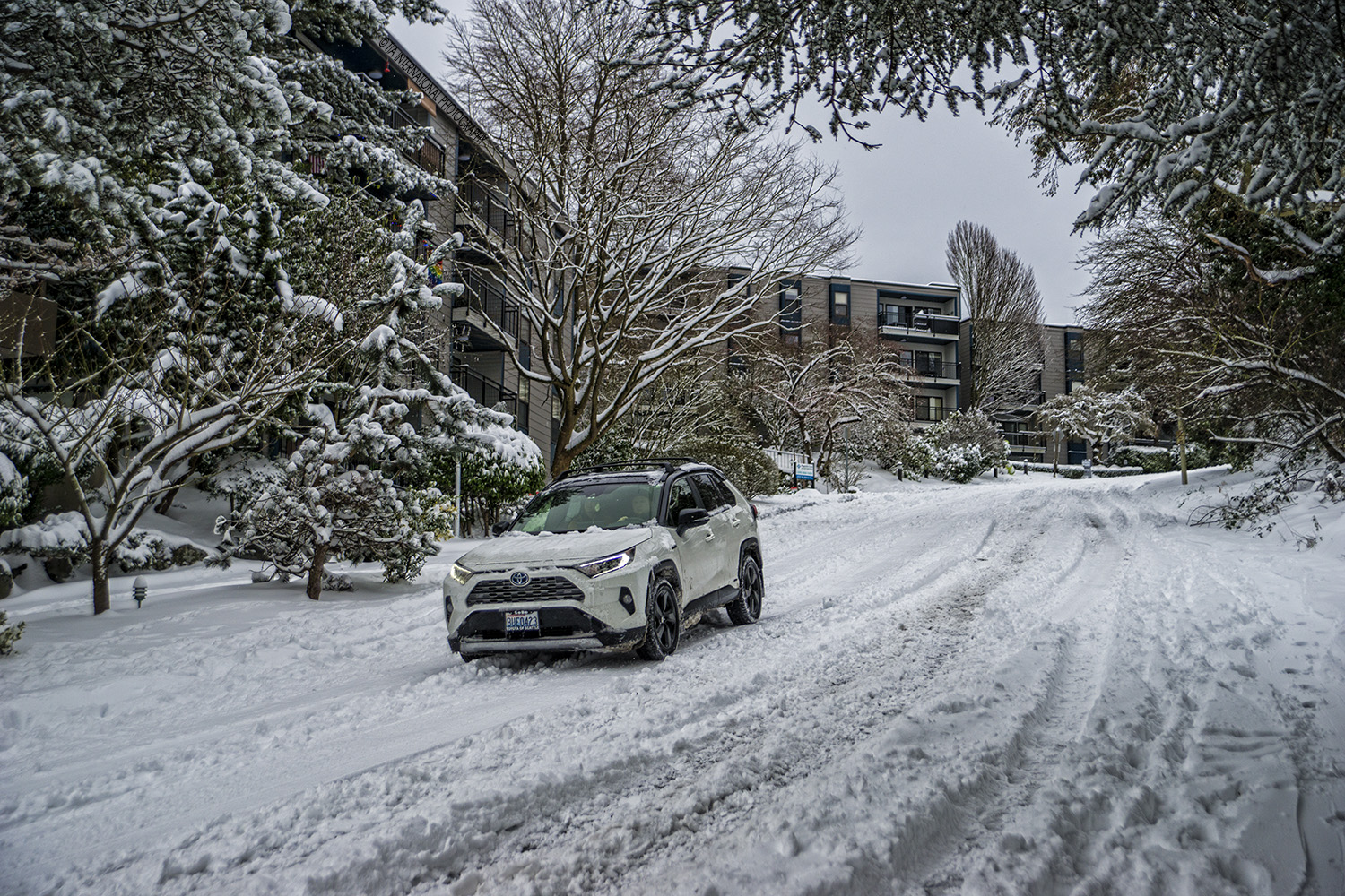 Driving down the steep hill along Manor Place, Magnolia, Seattle (February 13, 2021).