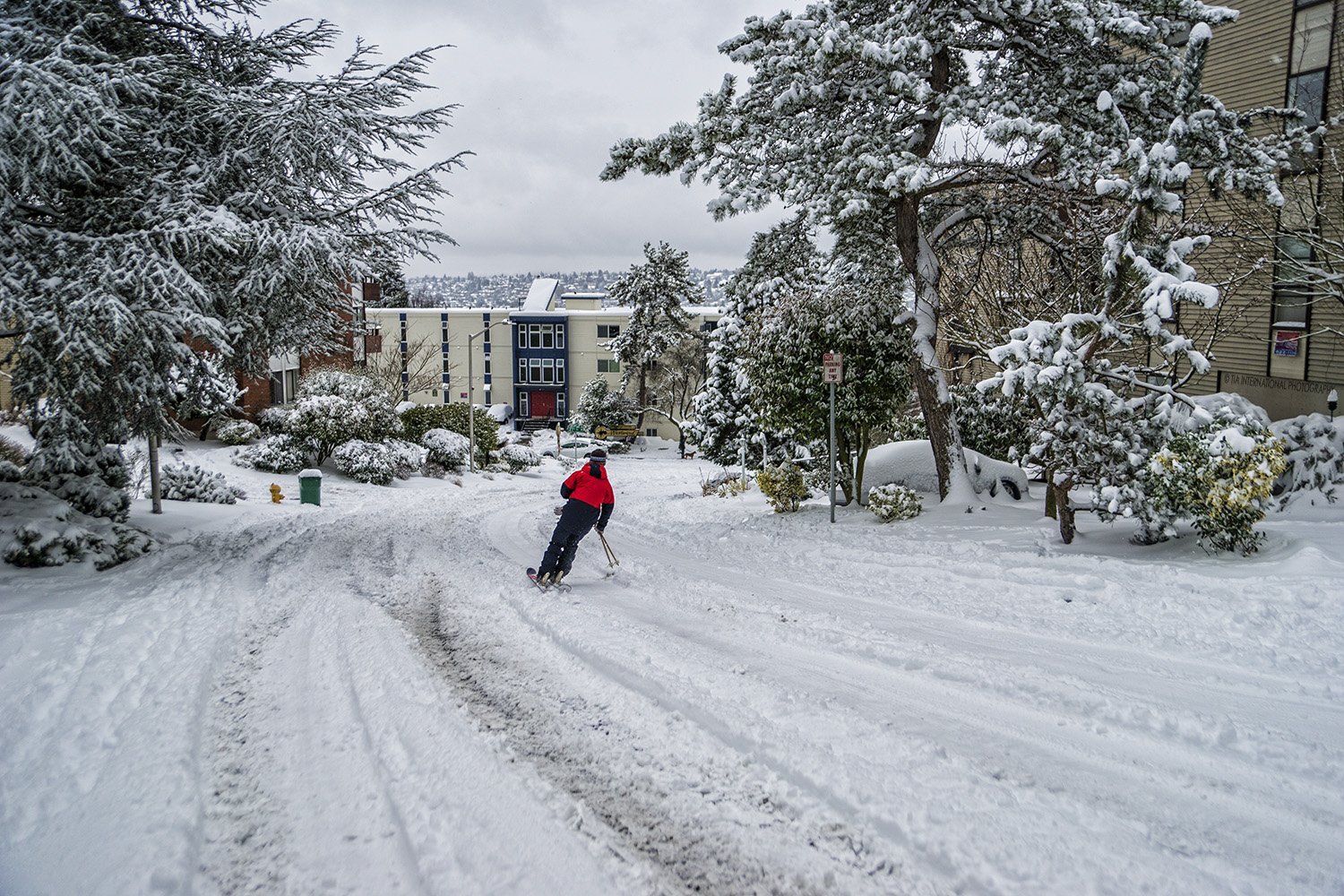 Skiing down Manor Place, Magnolia, Seattle (February 13, 2021).
