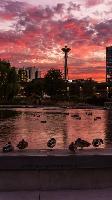 Space Needle at sunset / Lake Union Park / Seattle / September 24, 2021.