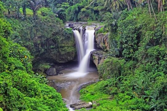 Tempat Wisata Tersembunyi di Bali - Air Terju Tegenungan
