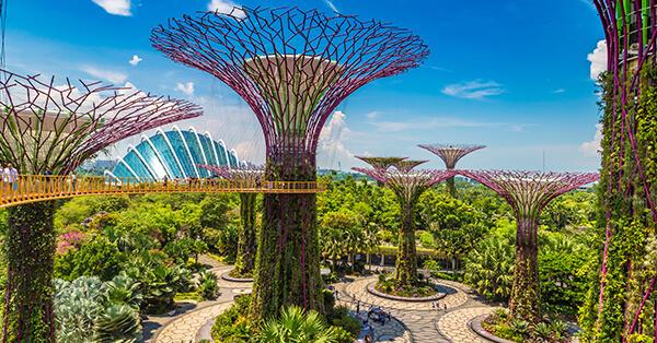 Tempat Wisata Singapura dalam Film Crazy Rich Asians - Garden By The Bay