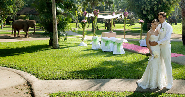 Venue Wedding di Bali Terindah - Elephant Safari Park & Lodge