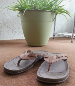 New flipflops, just delivered.