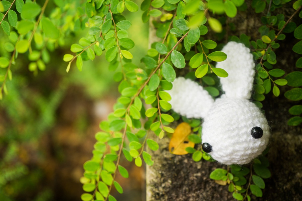 Toki the Bunny – Free Amigurumi Crochet Pattern