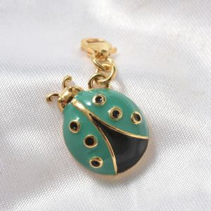 TJC charm with enamelling