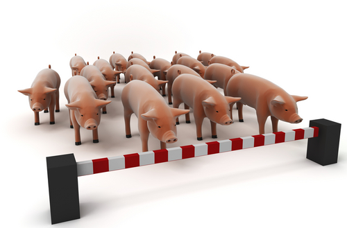 If everyone avoided contracting the swine flu, we could easily put a stop to it.