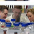 Bonner Forscher haben einen elementaren Mechanismus entdeckt, der im gesunden Menschen lebenswichtige Immunfunktionen reguliert. In Hungersituationen, die für die Körperzellen Stress bedeuten, schüttet der Körper demnach vermehrt antimikrobielle Peptide aus, […]