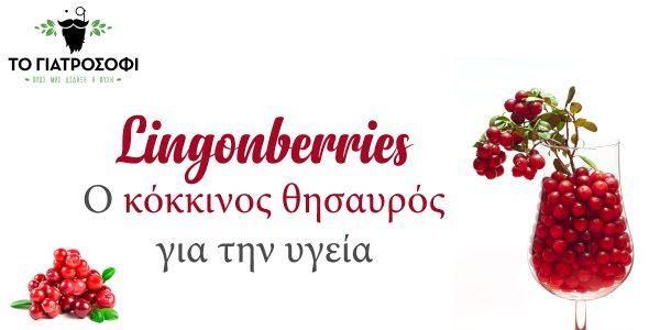 Lingonberries: Η διατροφική αξία του κόκκινου μύρτιλου