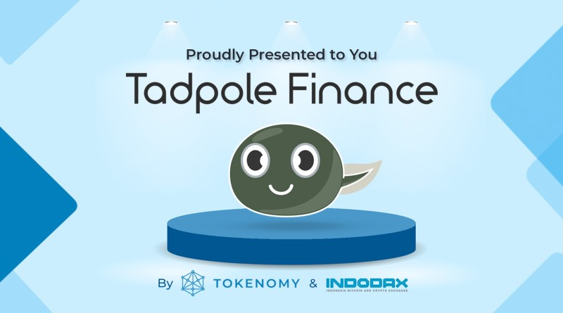 Proudly Presented to You: TADPOLEFINANCE!