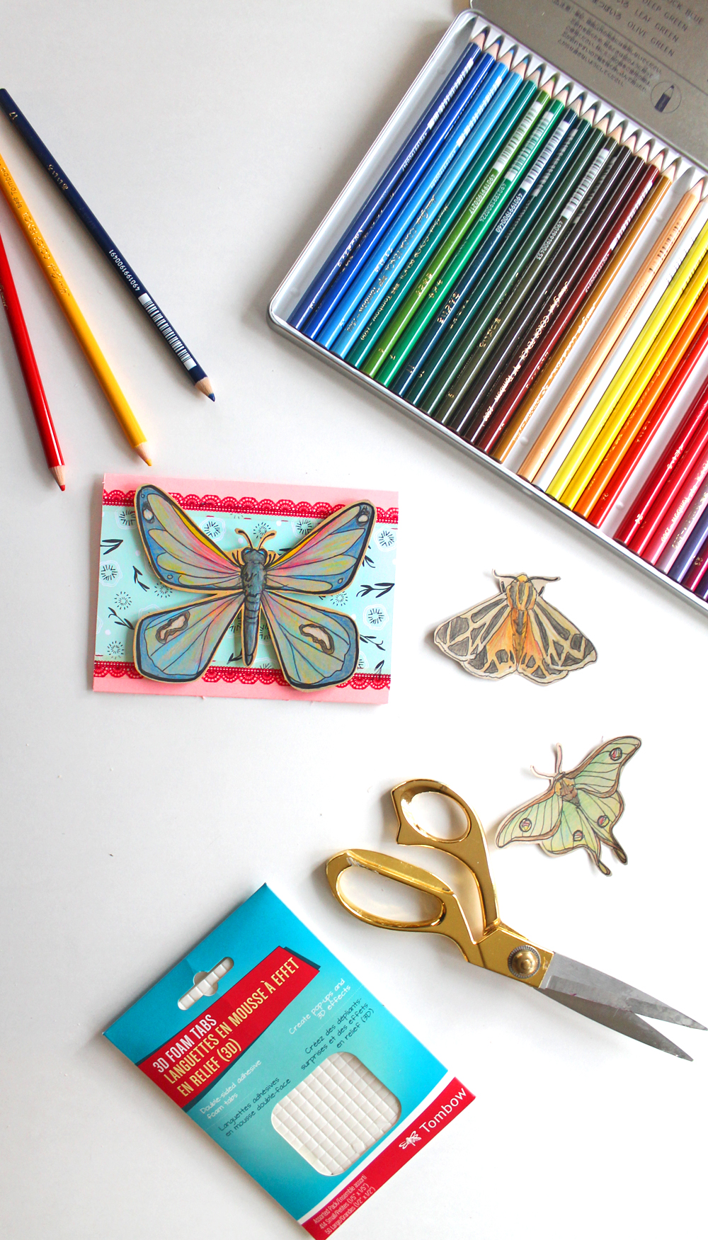 Colored Pencil Butterflies