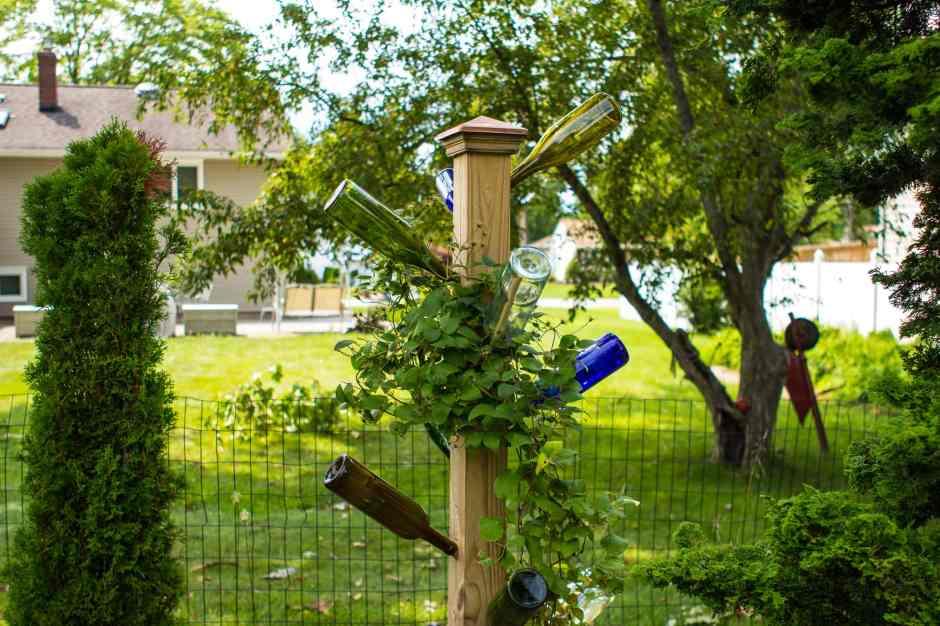 Garden Bottle Tree