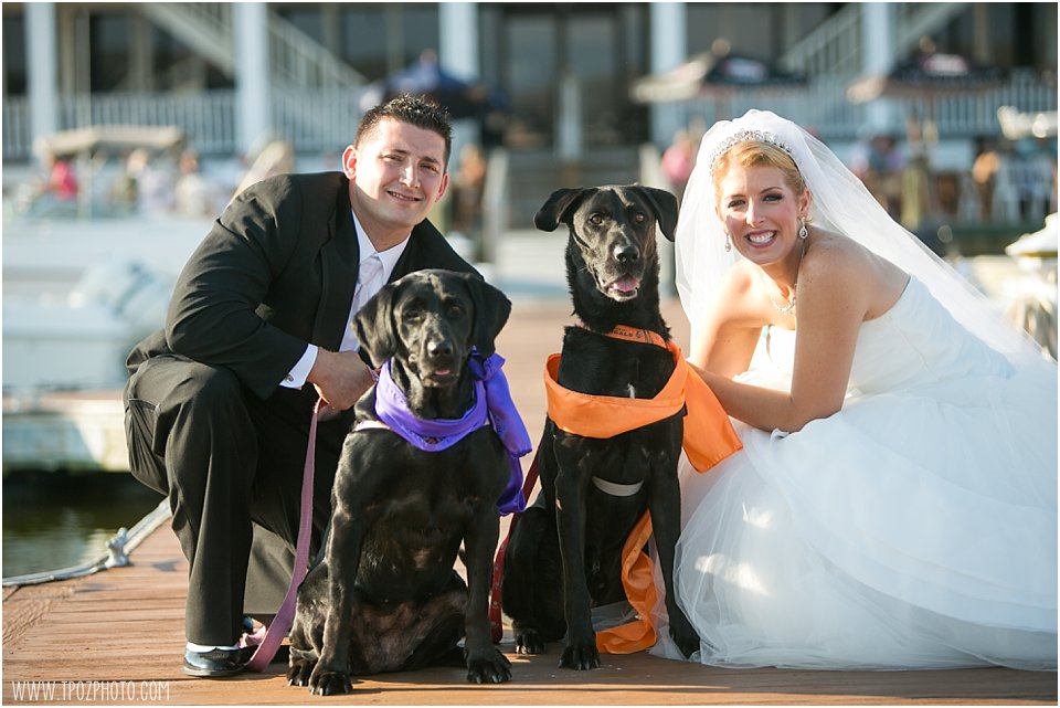 Bride+Groom with their dogs
