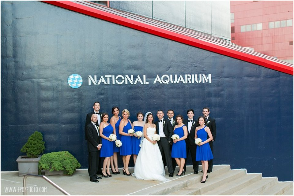 Baltimore Aquarium Wedding Photos •  tPoz Photography  •  www.tpozphoto.com