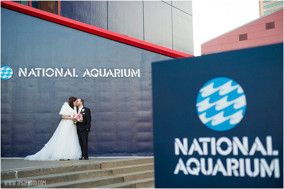 National Aquarium in Baltimore wedding photos •  tPoz Photography  •  www.tpozphoto.com
