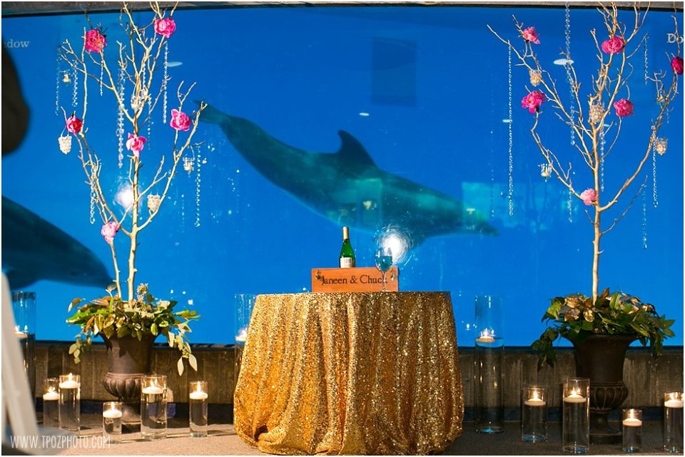 National Aquarium wedding ceremony in the dolphin viewing room photos •  tPoz Photography  •  www.tpozphoto.com