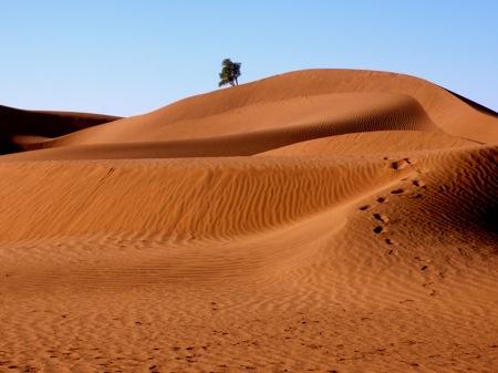 M'hamid-Sahara-Desert-Dunes
